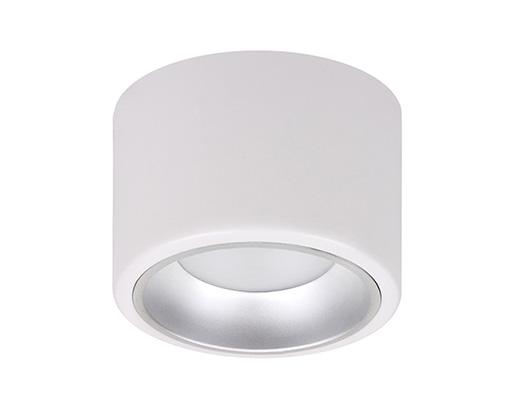 LED DownLight D25